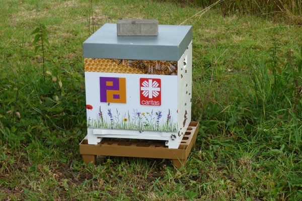 Joint with Caritas charity, Piepenbrock sets up beehives Germany-wide.